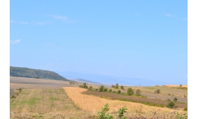 Fotografii din Țuțcanii din Deal